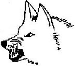 hunde bilder zum zeichnen